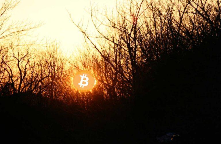 webitcoin-bitcoin-no-cotidiano-adocao-da-criptomoeda-esta-em-um-estagio-mais-avancado-do-que-geralmente-e-falado-set-12