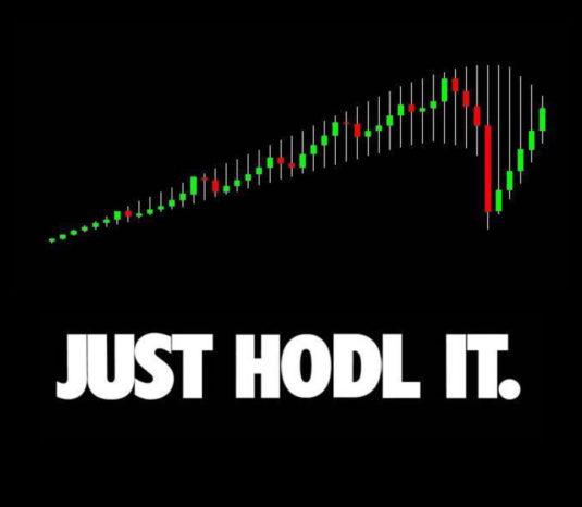 webitcoin-estudo-revela-investidores-e-especuladores-de-bitcoin-mantiveram-suas-posicoes-no-ultimo-trimestre-set-25
